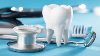 歯石取りの頻度